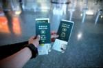 護照們..